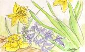 Flowers - watercolor