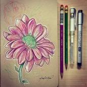 Flower - color pencils on toned paper