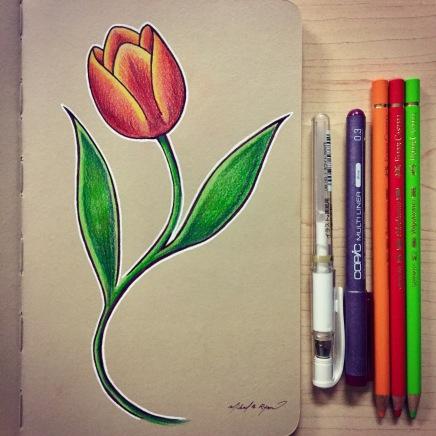 Illustration: Tulip