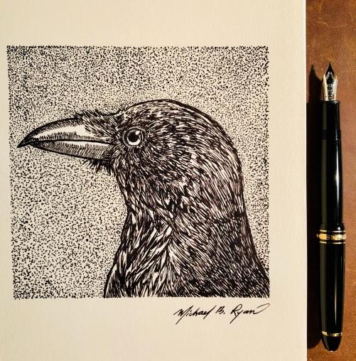Pen & Ink: Crow