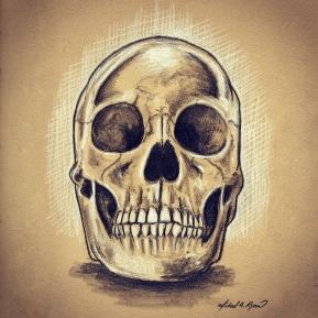 Graphite & White Charcoal: Skull
